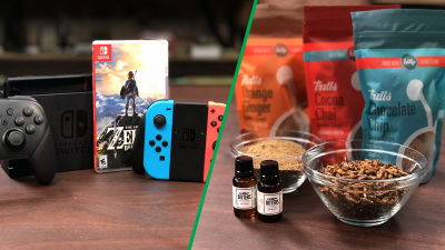 Nintendo Switch review, raising crickets for food with tech, IoT Security, and GDC 2017