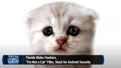 "Florida Water Hackers, ""I'm Not a Cat"" Filter, Slack for Android Security"