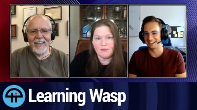 Learning Wasp