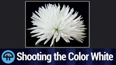 Shooting the Color White