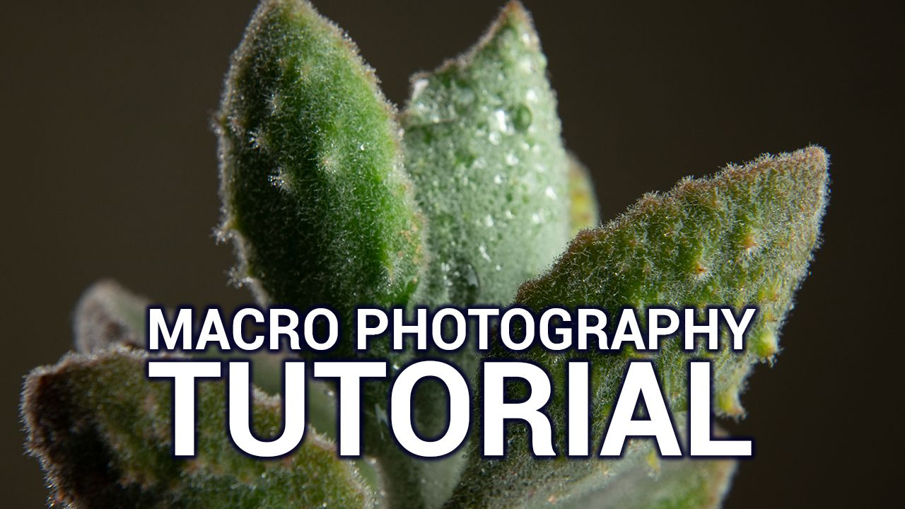 Hands-On Photography 48