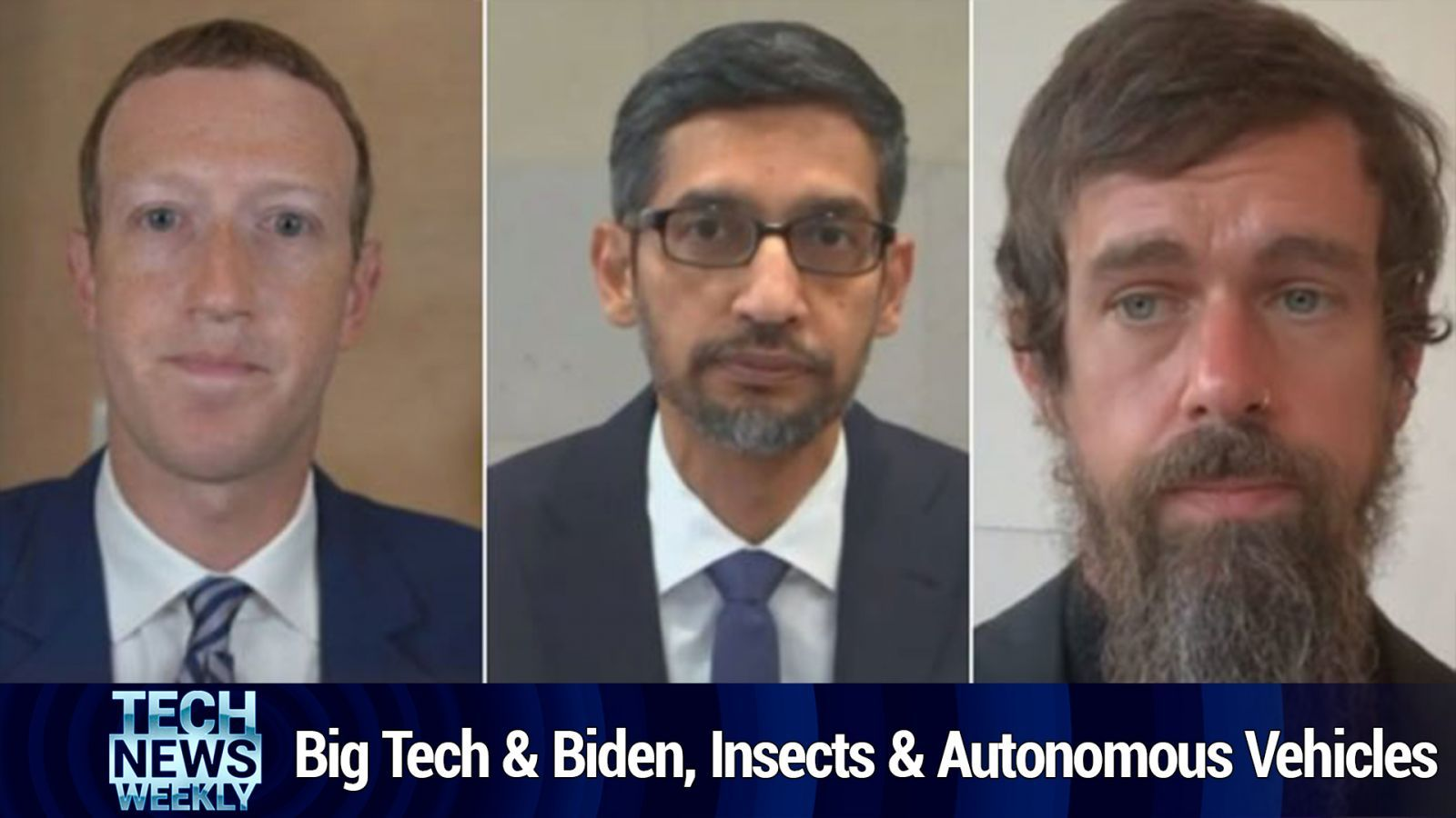 TNW 157: Section 230 in the Zoom-light - Biden and Big Tech, the Insect Impact Effect on Autonomous Vehicles